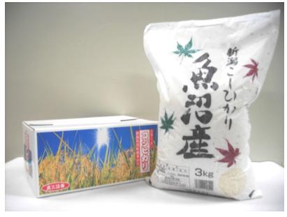 丸三証券優待品「コシヒカリ」